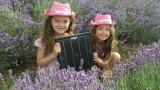 Solar Cowboys give up! Thanks to BBC Watchdog Mis-selling Exposé